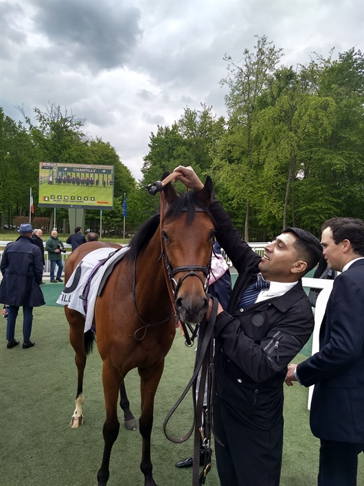 Third for Gypsy Spirit at Chantilly