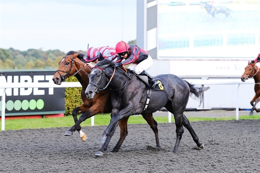 Success for Broughtons Gold at Kempton