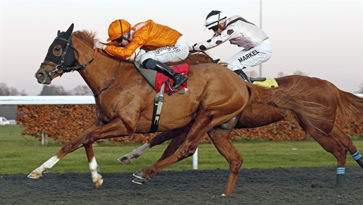 Rajman on top at Kempton