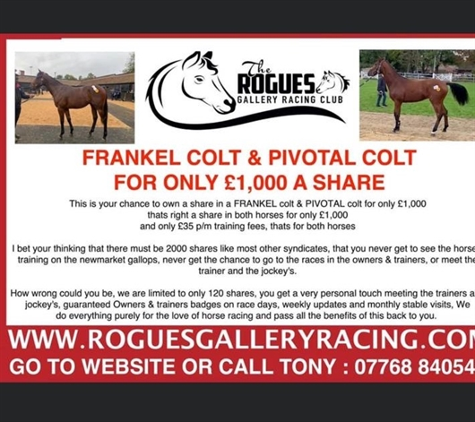 Shares available in exiting Rogues Gallery 2yos