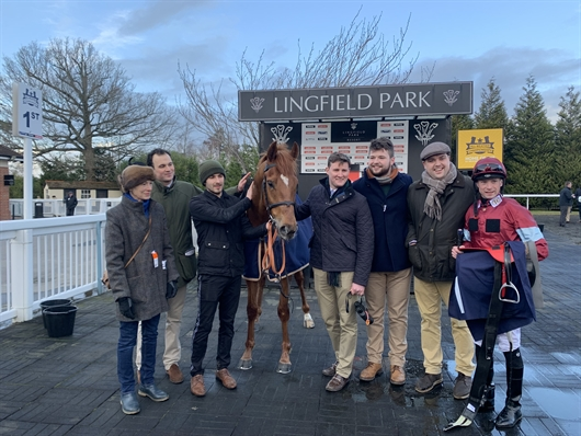 Wise Eagle on target at Lingfield