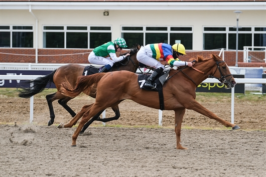 Ritchie Valens wins on stable debut