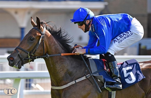 Juveniles to the fore thanks to Fairy Dust and Soldierpoy
